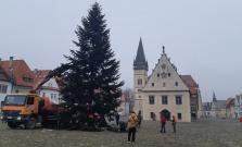 Vianočný strom už zdobí bardejovské námestie