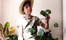Len dvanásťročný Bardejovčan Oliver prišiel s projektom, ktorý zachraňuje prírodu